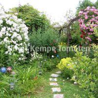 Gartengestaltung_04
