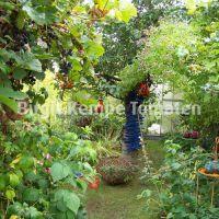 Gartengestaltung_12