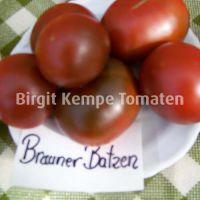 Brauner_Batzen