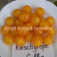 Kirschgrosse_Gelbe